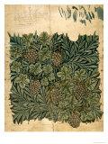 Design For Vine Wallpaper, c.1872 Reproduction procédé giclée par William Morris
