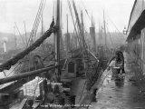 Fish Docks, Grimsby, Early 20th Century Lámina fotográfica