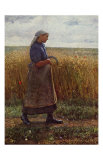 Summer Harvest Prints by Leopold Karl Walter von Kalckreuth