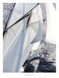 Amazing Sail Poster by Guillaume Plisson