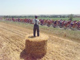 A Lone Spectator Watches the Pack Ride by from the Top of a Bale of Hay Lámina fotográfica