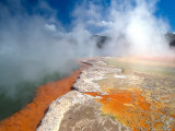 Champagne Pool, Waiotapu Thermal Wonderland near Rotorua, New Zealand Fotografisk trykk av David Wall