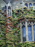 Halls of Ivy, Oxford University, England Photographic Print by Bill Bachmann