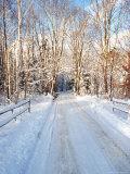 Winter Road in New England Fotografie-Druck von Bill Bachmann