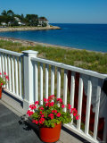 View from Beach House, Scituate, Massachusetts Stampa fotografica di Lisa S. Engelbrecht