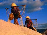 Female Labourers Carrying Sea Salt in Salt Fields of Doc Let Beach, Khanh Hoa, Vietnam Reproduction photographique par John Banagan