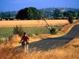 Cyclist, with Great Western Tiers Mountain Range in the Background, Bracknell, Australia Lámina fotográfica por Trevor Creighton