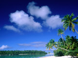 Palm Trees on Aitutaki Lagoon, Aitutaki, Southern Group, Cook Islands Reproduction photographique par John Banagan
