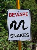 Snake Sign at Museum of Modern Art in Heidi, Melbourne, Australia Reproduction photographique par John Banagan