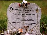 Rock Star Billy Fury's Grave in Mill Hill Cemetry in Overgrown Field Fotografie-Druck