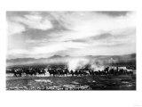 Death Valley, California - View of a Twenty Mule Borax Team Plakater af  Lantern Press