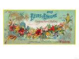 Fleurs D Ethiopie Soap Label - Paris, France Posters by  Lantern Press