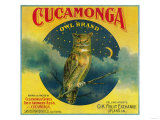 Owl Orange Label - Cucamonga, CA Art by  Lantern Press