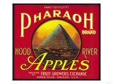 Pharaoh Apple Crate Label - Hood River, OR Poster tekijänä  Lantern Press