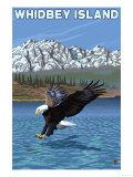 Whidbey Island, Washington - Eagle Fishing Affischer av  Lantern Press