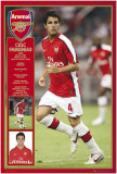 Arsenal - Fabregas Posters