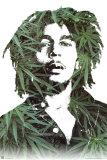 Bob Marley Stampe