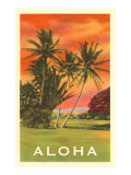 Aloha: Palm Trees Poster