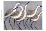 Shore Birds II Prints by Norman Wyatt Jr.