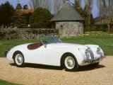 1954 Jaguar XK120 Reproduction photographique