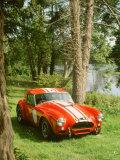 1964 AC Cobra Le Mans Fotografie-Druck