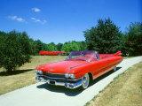 1959 Cadillac Series 62 Fotografie-Druck