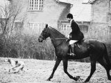 Prince Charles Prince of Wales Going Hunting on His Horse with His Dog March 1981 Fotografisk tryk
