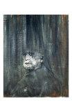 Head, c.1949 Affischer av Francis Bacon
