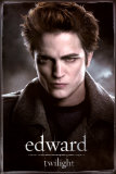 Twilight (film) Posters
