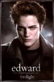 Twilight (Video Release) Foto