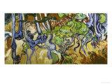 Tree Roots and Tree Trunks Reproduction procédé giclée par Vincent van Gogh