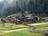 Kashmiri Village in Warwan Valley Beneath a Deodar Forest Photographic Print by Gordon Wiltsie