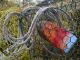 Patterns and Colors of Vintage Crab Traps and Floats Photographic Print by Stephen St. John