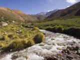 River in Rio Colorado Valley Reproduction photographique par Grant Dixon