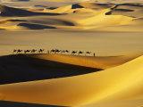 Tuareg Nomads with Camels in Sand Dunes of Sahara Desert, Arakou Fotografisk tryk af Johnny Haglund