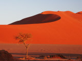 Red Color of Sossusvlei Sand Dunes after Sunrise Photographic Print by Uros Ravbar