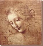 Kvinne med hermelin (La Scapigliata), ca. 1508 Trykk på strukket lerret av  Leonardo da Vinci