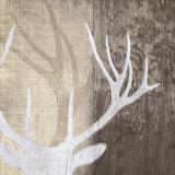 Deer Lodge II Posters par Tandi Venter