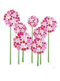 Pink Allium Kunstdruck von  Avalisa