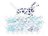 Blue Dalmation Pattern Posters af  Avalisa