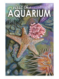 Visit the Aquarium, Tidepool Scene Plakater af  Lantern Press