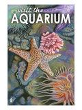 Visit the Aquarium, Tidepool Scene Print by  Lantern Press