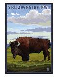 Yellowknife, NW Territories, Canada, Bison Scene Posters av  Lantern Press