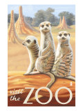 Visit the Zoo, Meerkats Scene Poster by  Lantern Press