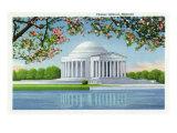 Washington, DC, View of the Thomas Jefferson Memorial, Cherry Trees Posters by  Lantern Press