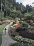 Sunken Garden at Butchart Gardens, Vancouver Island, British Columbia, Canada Photographic Print by Connie Ricca