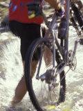 Mountain Biking Photographic Print by Lee Kopfler