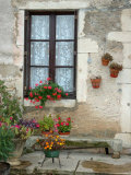 Flowers of Private Home, Burgundy, France Stampa fotografica di Lisa S. Engelbrecht
