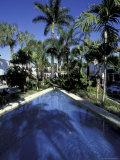 Lincoln Road, South Beach, Miami, Florida, USA Fotografie-Druck von Robin Hill