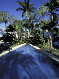 Lincoln Road, South Beach, Miami, Florida, USA Photographic Print by Robin Hill